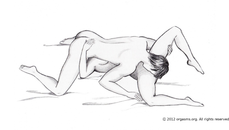 Illustrated sexual posistions — img 14